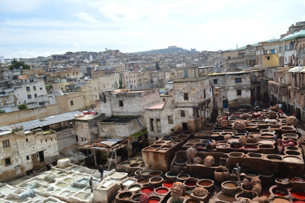 Fes, tanners district