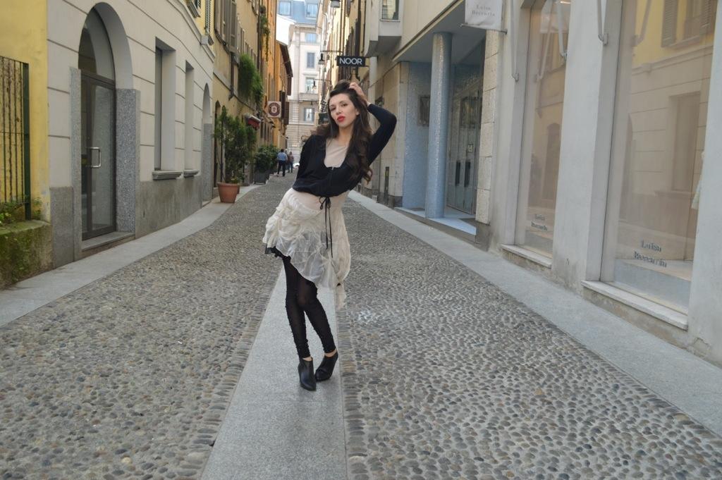 White and Black Swan in Brera, Milano