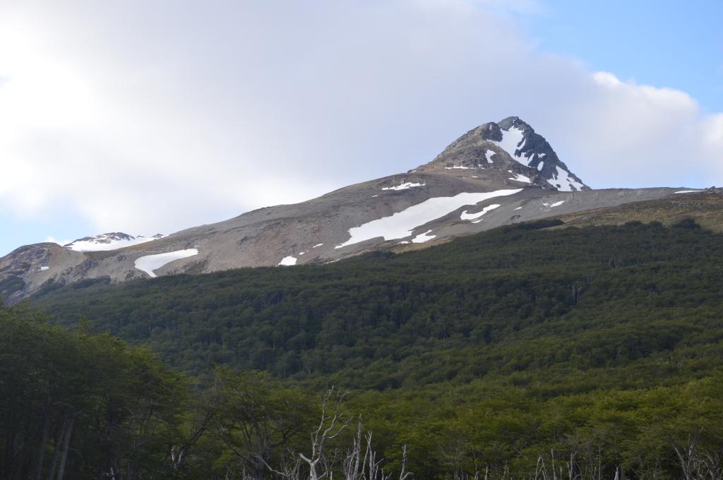 Looking for beavers, Patagonia