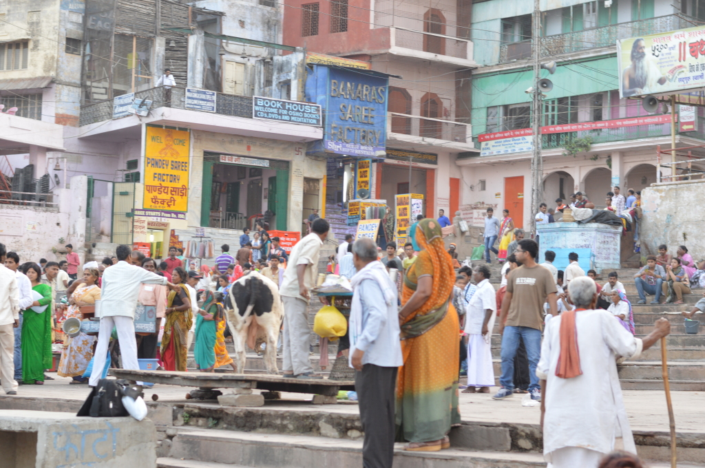 The oldest living city in the earth, Varanasi