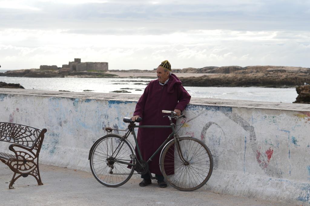 Essaouira and the incredible climbing goats